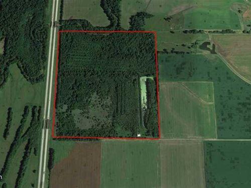 Barton County Trifecta, Deer, Turk : Lamar : Barton County : Missouri