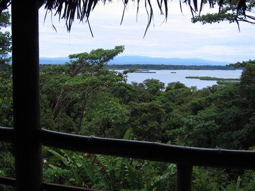 Amazing Opportunity Farm to Table : Bastimentos : Panama