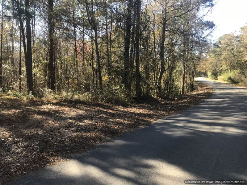 Outstanding Hunting Tract : Heidelberg : Jasper County : Mississippi