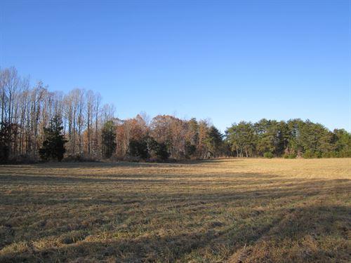 High Ridge Farm : Farmville : Buckingham County : Virginia