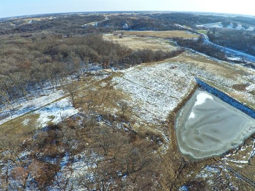 Premium Iowa Deer Hunting Farm : Melrose : Monroe County : Iowa