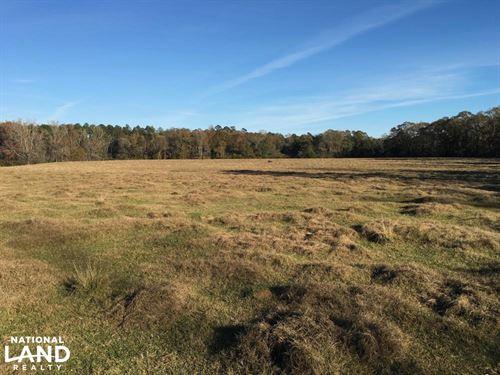 The Frankville Farm & Creek Tract : Frankville : Washington County : Alabama