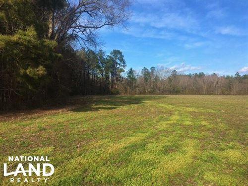 Holly Hill Multi-Use Property : Holly Hill : Orangeburg County : South Carolina