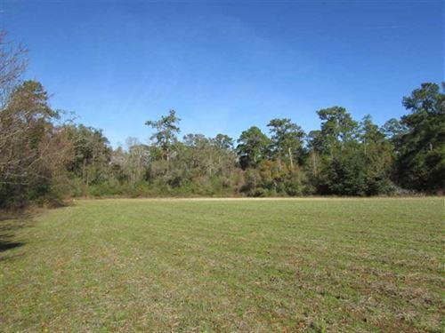 41.88 Acres in Northern Thomas : Coolidge : Thomas County : Georgia