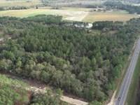 20 Acres Land For Sale Pierce Coun : Bristol : Pierce County : Georgia