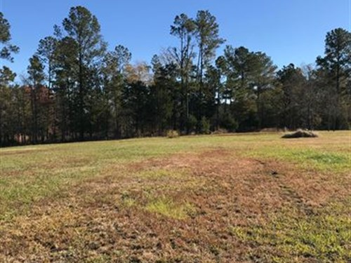 34Ac Recreational/Residential Tract : Whitmire : Laurens County : South Carolina
