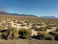 10 Acres Elko County, Nv : Elko : Elko County : Nevada