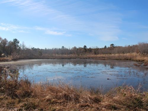 Cabin Site With Pond : Cochran : Bleckley County : Georgia
