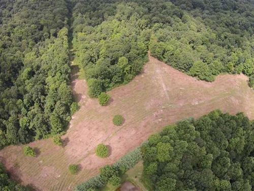 Tracts 1 & 2, 54.3 Private Acres : Breeding : Metcalfe County : Kentucky
