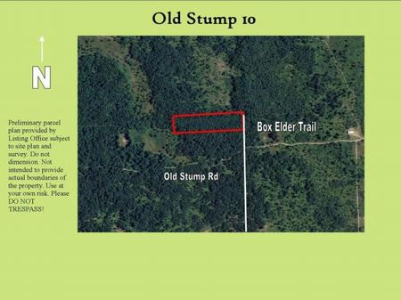 10 Prime Hunting Acres : Gaylord : Otsego County : Michigan