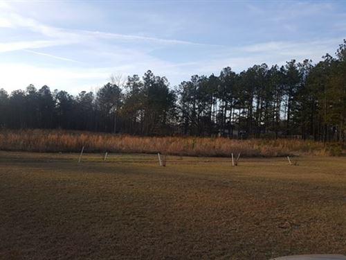 Beautiful Level Home Sites : Milledgeville : Baldwin County : Georgia