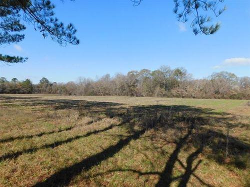 28Ac Mini Farm, Endless Potential : Montezuma : Macon County : Georgia