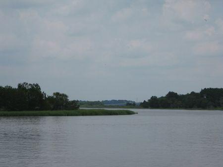 Jehossee Tract : Edisto Island : Charleston County : South Carolina