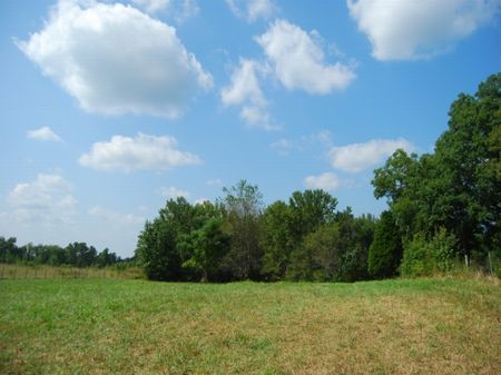 12 Acres In Upstate South Carolina : Cowpens : Spartanburg County : South Carolina