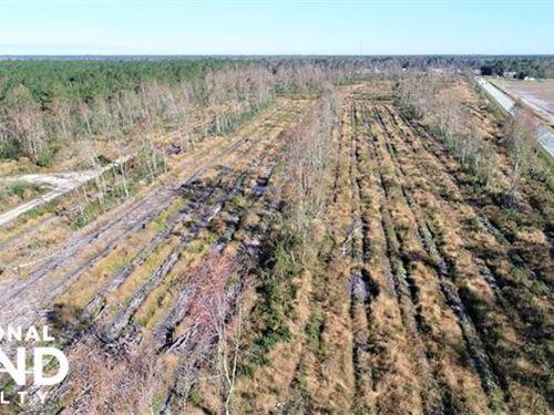 Sliver Tract : Richland : Jones County : North Carolina