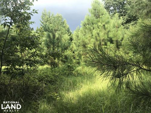Harpersville Homesite Opportunity : Harpersville : Shelby County : Alabama