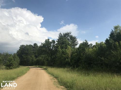 Harpersville Timber And Homesite We : Harpersville : Shelby County : Alabama