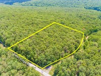 13+ Acres To Build Your Dream Home : Signal Mountain : Sequatchie County : Tennessee