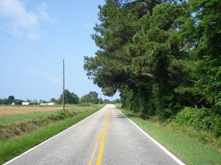 Pence Lake Tract A : Bennettsville : Marlboro County : South Carolina