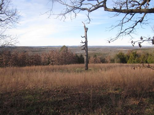 Land Overlooking Bull Shoals Lake : Yellville : Marion County : Arkansas