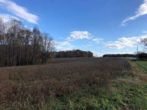 Beautiful Farm With Pond : Rocky Mount : Franklin County : Virginia