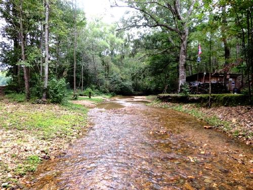 134 Acres Adjoins National Forest : Talladega : Clay County : Alabama
