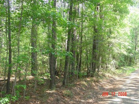 Mellard Tract : Goose Creek : Berkeley County : South Carolina