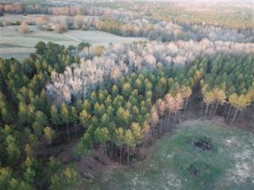 Beautiful 28 Ac Minifarm With Creek : Standing Rock : Chambers County : Alabama