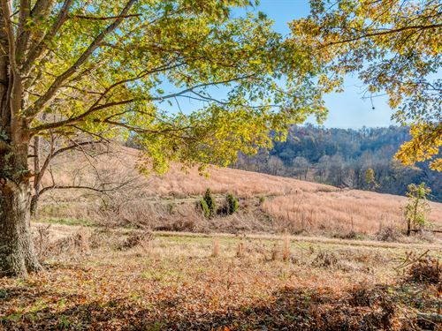 Gorgeous Recreational Property : Hampshire : Maury County : Tennessee