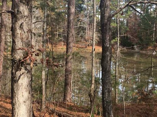 Great Timber And Hunting Tract in : Talbotton : Talbot County : Georgia