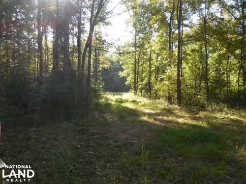 O'quinn South Tract, 66.8Ac : Harriston : Jefferson County : Mississippi