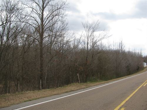 Land For Sale In Hardin County, TN : Adamsville : Hardin County : Tennessee