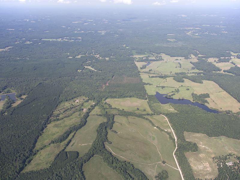 411 Acres Of Recreational Land : Haralson : Meriwether County : Georgia