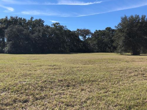 Beautiful 10 Acre Tract 776937 : Chiefland : Levy County : Florida