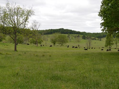 Southern Missouri Ranch For Sale : Fremont : Carter County : Missouri