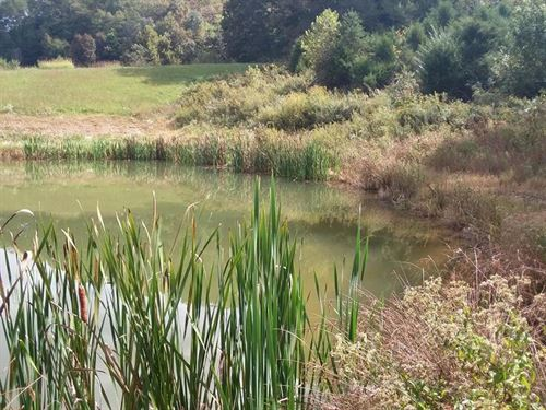 Has A Huge Pond : Sneedville : Hancock County : Tennessee