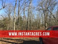 6 Acres On Lake, Seller Financing : Branson : Taney County : Missouri