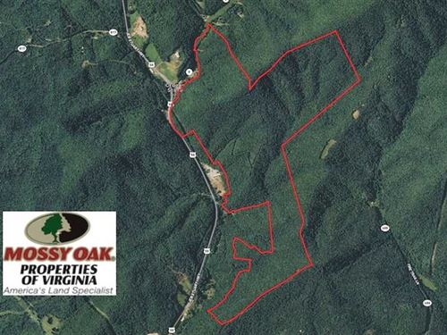 454 Acres of Hunting And Developme : Stuart : Patrick County : Virginia