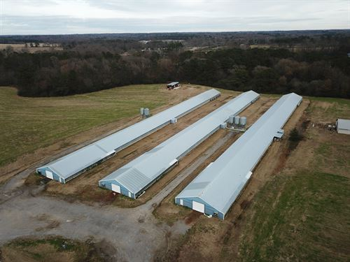3 House Broiler Farm : Albertville : Marshall County : Alabama