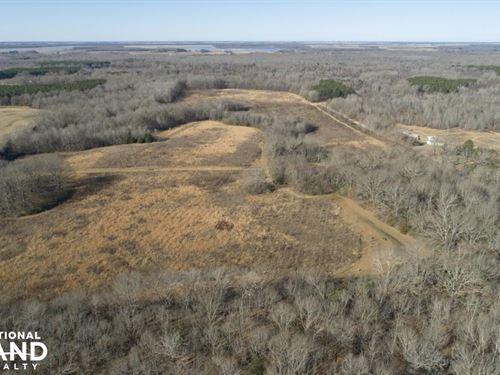 120 Acre Recreational Property : Crocketts Bluff : Arkansas County : Arkansas