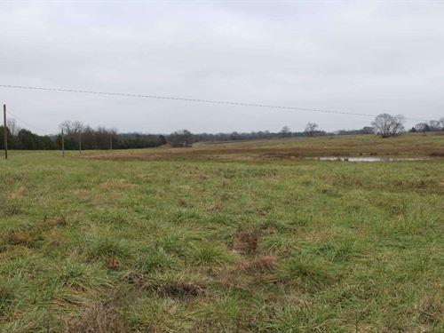 79 Acre Farm Bowling Green, KY : Bowling Green : Warren County : Kentucky