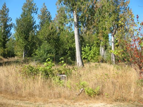 5.4 Acres Prime Washington : Grapeview : Mason County : Washington