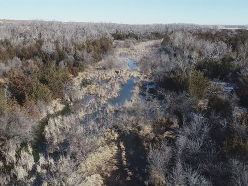 Republican River Crep And Wildlife : Trenton : Hitchcock County : Nebraska