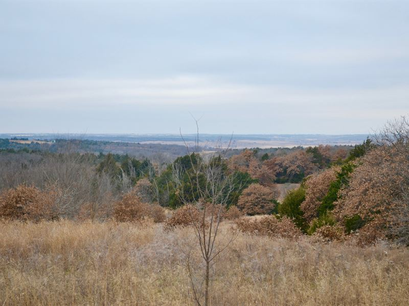 Land Property Caddo County Oklahoma : Gracemont : Caddo County : Oklahoma