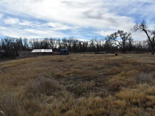South Platte Whitetail And Waterfow : Ovid : Sedgwick County : Colorado