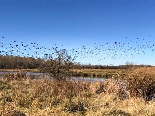 Brier Creek Waterfowl Preserve : Tecumseh : Pottawatomie County : Oklahoma