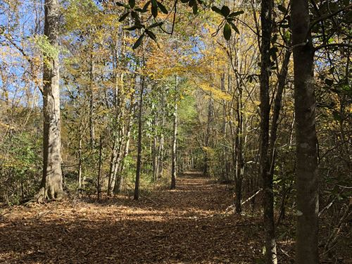 102 +/- Acres With Camp Cr3 : Georgiana : Conecuh County : Alabama