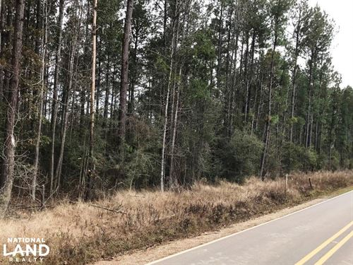 Rawls Springs Timberland Tract Near : Hattiesburg : Forrest County : Mississippi