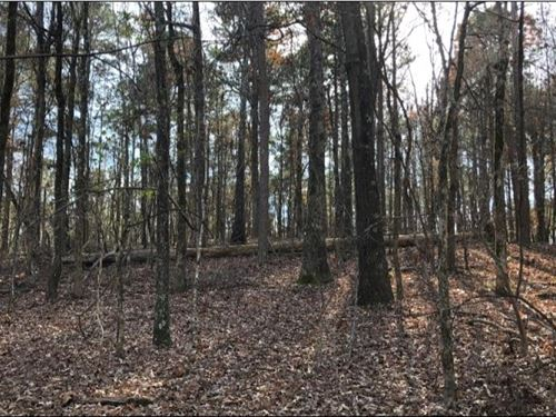 28.5 Acres In Lafayette County In : Tula : Lafayette County : Mississippi