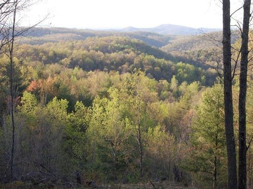 Wooded Hunting & Recreational Land : Shawsville : Montgomery County : Virginia